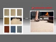 Design | Duvardan Duvara Halı | Associated Weavers