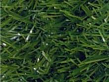 Elegant Yeşil | Çim Halı | Associated Carpets