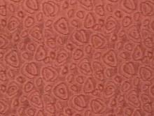 sedef 4 | Duvardan Duvara Halı | Dinarsu